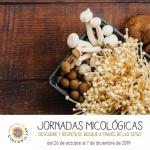 Las Cinco Villas se proponen profesionalizar la micología